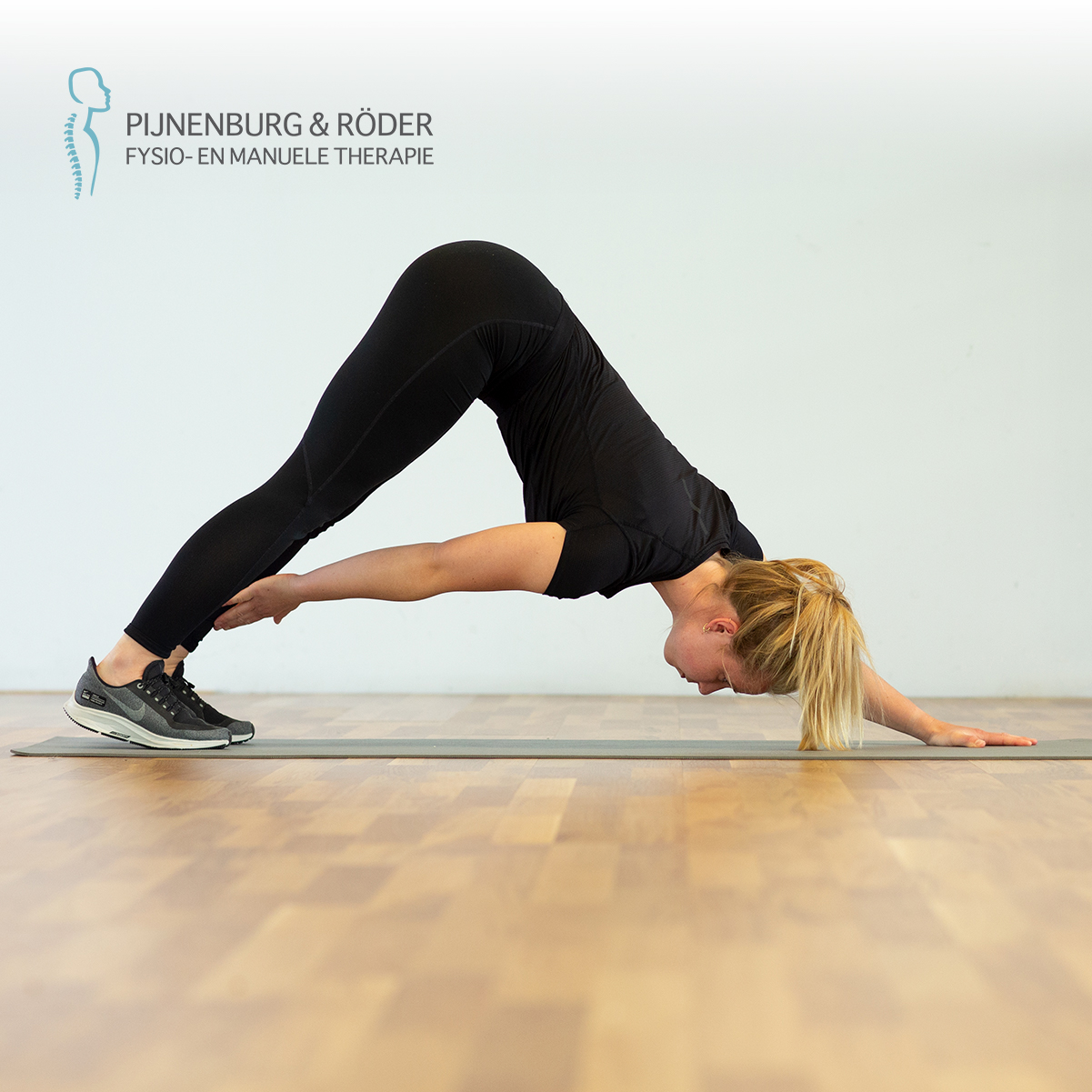 lage rug stabiliteit plank with alternating shin touch